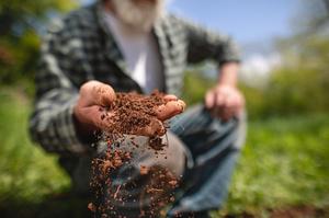 Рада ухвалила закон про сільськогосподарську кооперацію