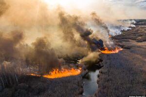 Через аномальне потепління цього року вперше зафіксовані пожежі за Полярним колом