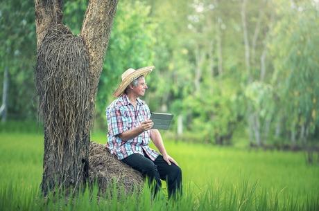 Агросектор і діджиталізація – вічний конфлікт чи пошук шляху