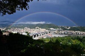 Компанії Ахметова поставляли сталь для нового мосту в Генуї
