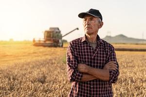 Торгівля агропродукцією між Україною та ЄС за І півріччя зменшилася на 5,1%