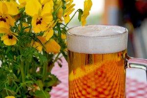 Провідним європейським виробником пива в ЄС стала ФРН, експортером – Нідерланди