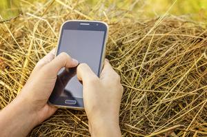 Другий за обсягом ринок смартфонів у минулому кварталі обрушився на 50%