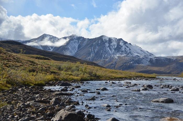 Адміністрація Трампа схвалила видобуток нафти в заповіднику дикої природи на Алясці