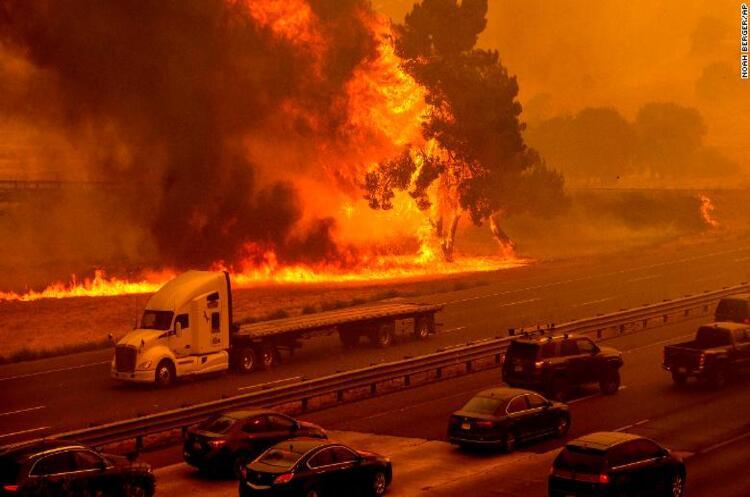 У Каліфорнії горять ліси