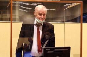 Суд у Гаазі розглядає апеляцію сербського польового командира Младича