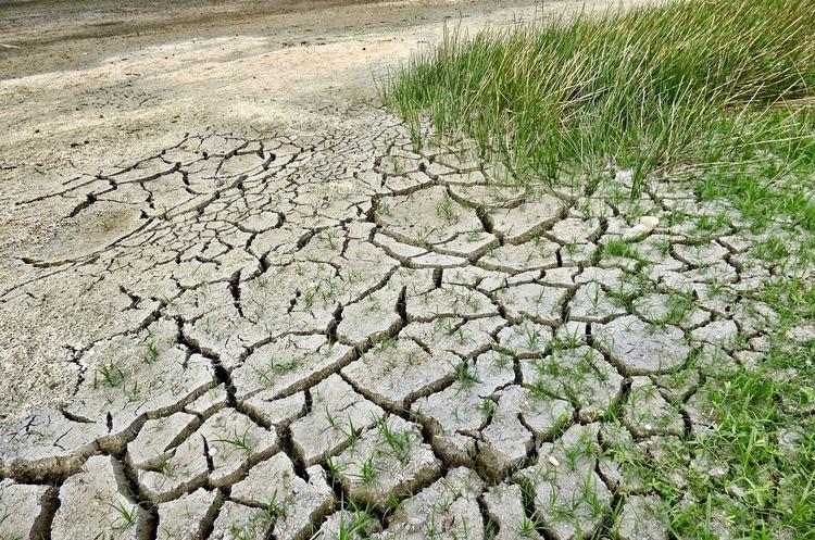 Четверо дітей та двоє молодих людей подали безпрецедентний кліматичний позов проти 33 країн