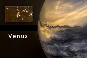 Російський мільярдер профінансує пошук життя на Венері