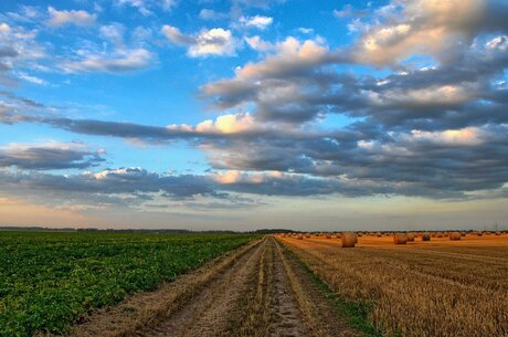 2 га в одни руки? Как не стать жертвой «двойной приватизации» земли