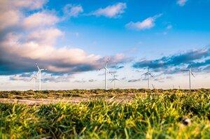 Провідні компанії ЄС підтримують «зелену угоду» і готові перебудувати бізнес під нові стандарти
