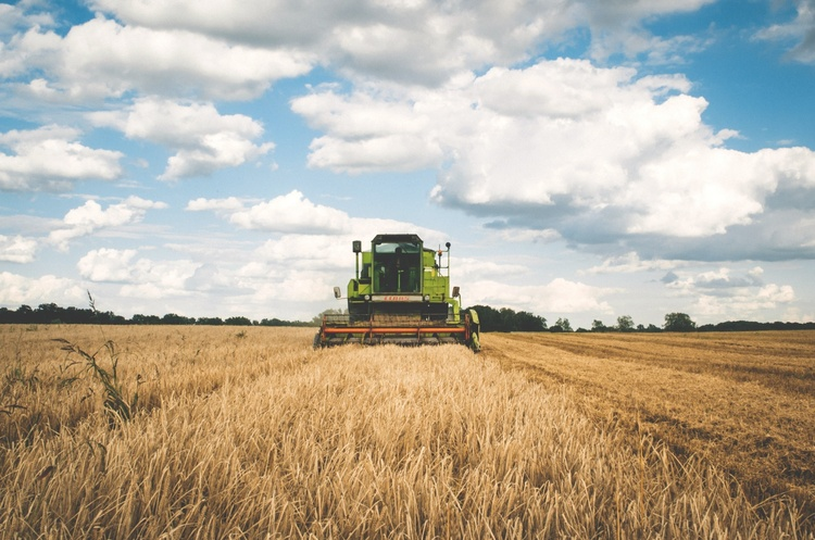 Рада прийняла за основу законопроєкт про зниження ПДВ для агросектору до 14%