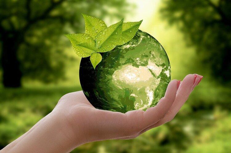 Природа великого бізнесу: як успішні компанії захищають клімат та екологію