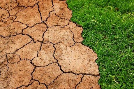Чи переросте посуха в полум'я протестів аграріїв