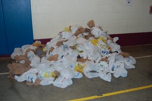 В Нью-Йорку почнуть штрафувати за продаж пластикових пакетів