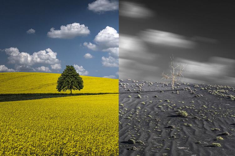 Найбільший в світі виробник вуглецевих викидів закликає до глобальної «зеленої революції»