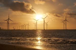 Світові нафтотрейдери інвестують мільярди у відновлювальну енергетику