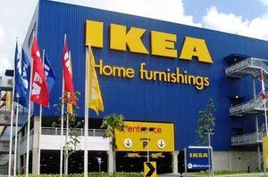 В IKEA заявили, що не знайшли доказів використання незаконно заготовленої деревини