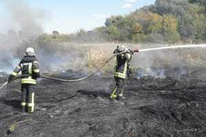 На Луганщині локалізували майже всі осередки пожежі