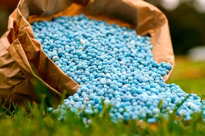 МКМТ відмовилася обмежувати імпорт добрив в Україну всупереч рекомендаціям Мінекономіки