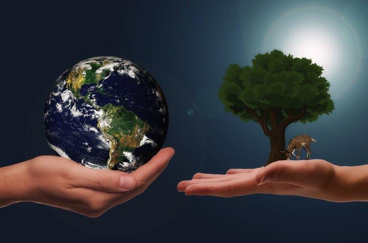Бізнеси із «зеленими» серцями: 4 корпорації, рухомі екомісіями