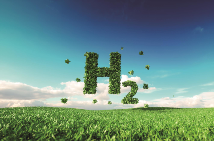 Німеччина розглядає аміак як спосіб доставки «зеленого» водню для промисловості