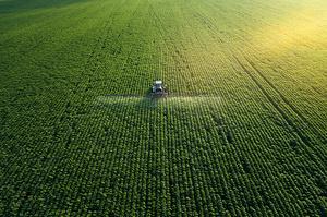 Прем'єр України прогнозує зростання вартості сільгоспземлі вп'ятеро за десять років і $85 млрд додаткового ВВП