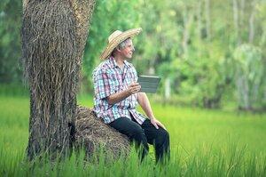 850 млн грн на село: как Минцифра хочет сократить цифровой разрыв