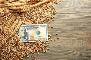 УЗА застерігає від запровадження державного регулювання цін на зерно