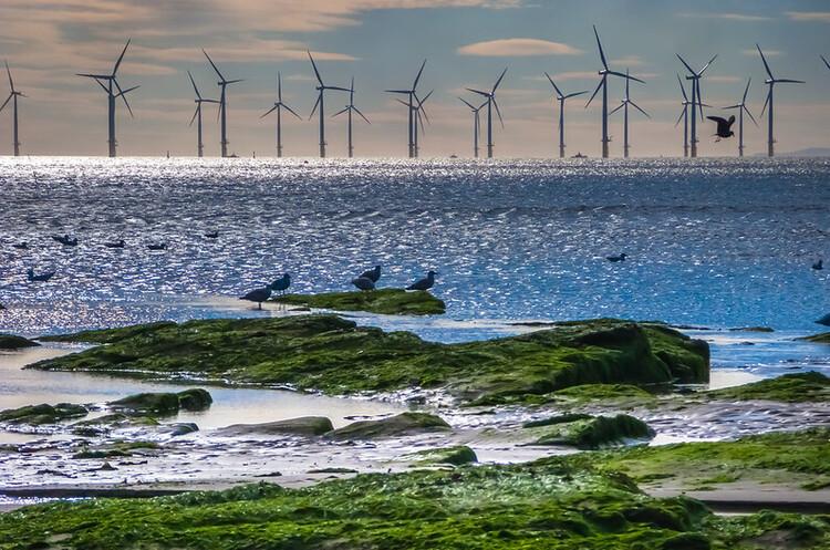ЄС прагне збільшити потужності морської вітроенергетики у 25 разів до 2050 року