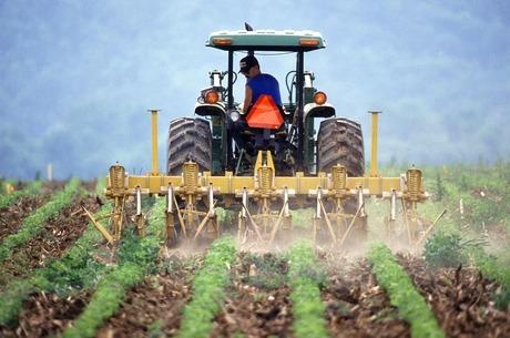 Земельна лотерея: чому фермери можуть лишитися поза грою