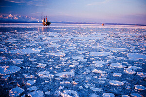 Трамп намагається полегшити видобуток нафти біля узбережжя Аляски
