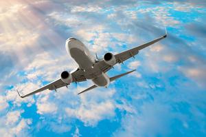 В Україні запускається нова лоукост-авіакомпанія – Bees Airline