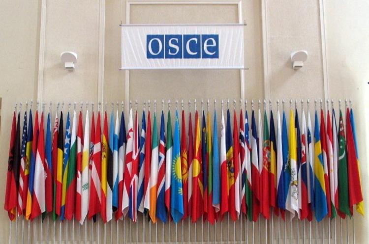 Суперечлива єдність: що підживлює приховану боротьбу за владу у верхівці ОБСЄ