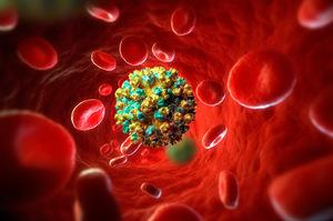 «Ласковый убийца»: что наука знает о гепатите С