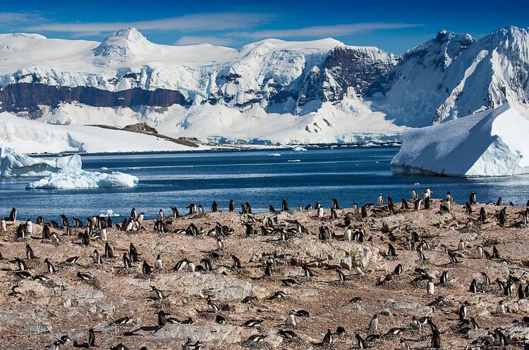 На Землі більше не залишилося континентів без COVID-19, вірус дійшов до Антарктиди