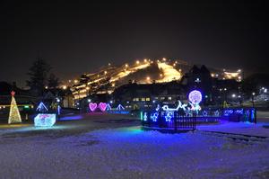 Південна Корея закриває лижні курорти на період різдвяно-новорічних свят