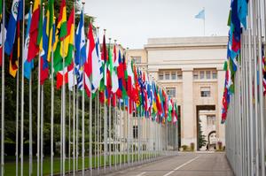 Бюджет ООН цьогоріч затвердили в сумі $3,2 млрд