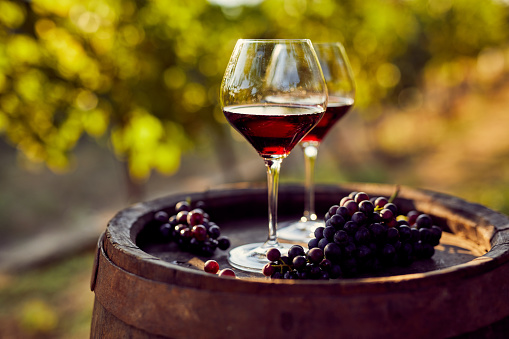 Україна запровадила нульове мито на імпорт вина з ЄС