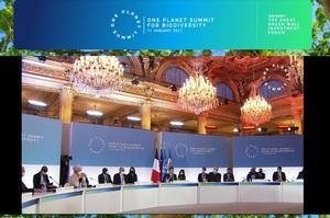 За ініціативи Макрона відкрився масштабний One Planet Summit, присвячений екології