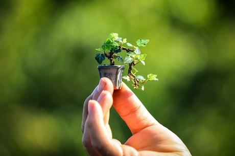 Практикуем успех: как внедрить кайдзен в бизнес на грант от ЕБРР