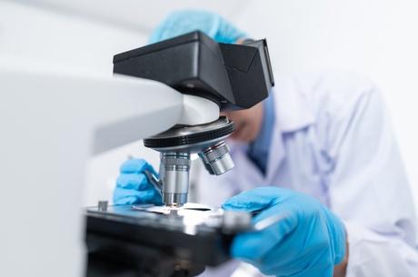 Знайти своє: як працює R&D для МСБ