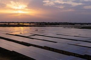 Total інвестує $2,5 млрд в сонячну енергетику в Індії