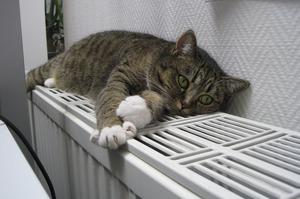 Кияни заборгували за «комуналку» 4 млрд грн – Кличко