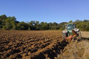 Аграрный фальстарт: почему запуск Минагрополитики пришлось отложить минимум на месяц