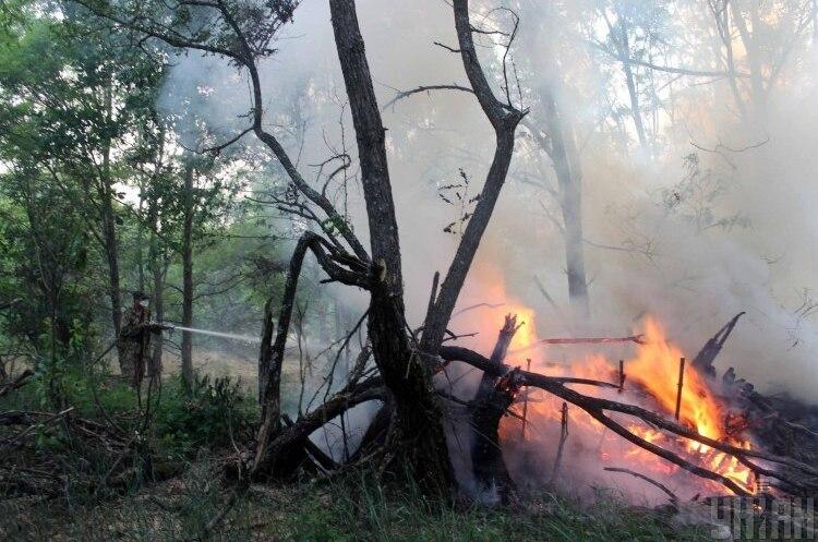 «Горіла сосна…»: ждать ли в этом году пожаров в Чернобыле