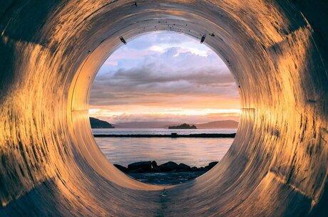 «Зеленый» аргумент: судьбу «Северного потока – 2» могут решить экологи и ученые