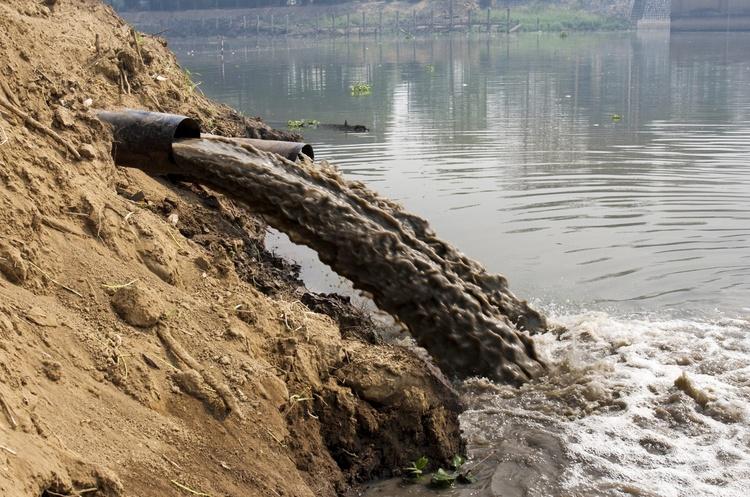 В українських річках Дон, Дністер і Дніпро знайшли наркотики, пестициди і хімікати