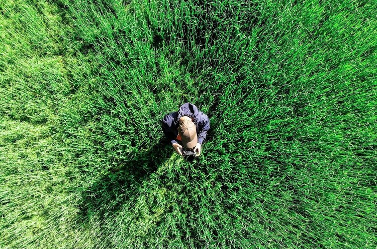 Старт от земли: какие инновации запускают аграрии