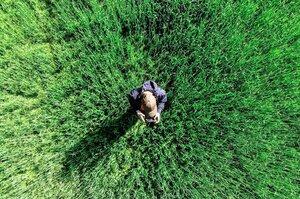 Старт від землі: які інновації запускають аграрії