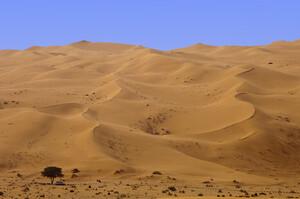 Дефіцит піску? У світі закінчується найбільш споживана сировина після води